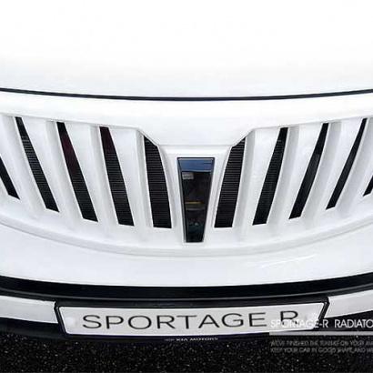 Тюнинг решетка радиатора окрашенная на Kia Sportage 3 (III)