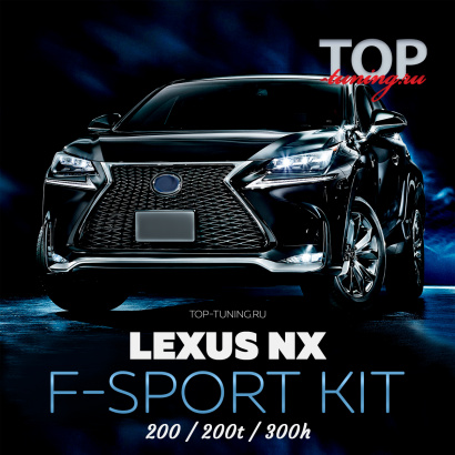 Обвеc  Vision F-SPORT на Lexus NX