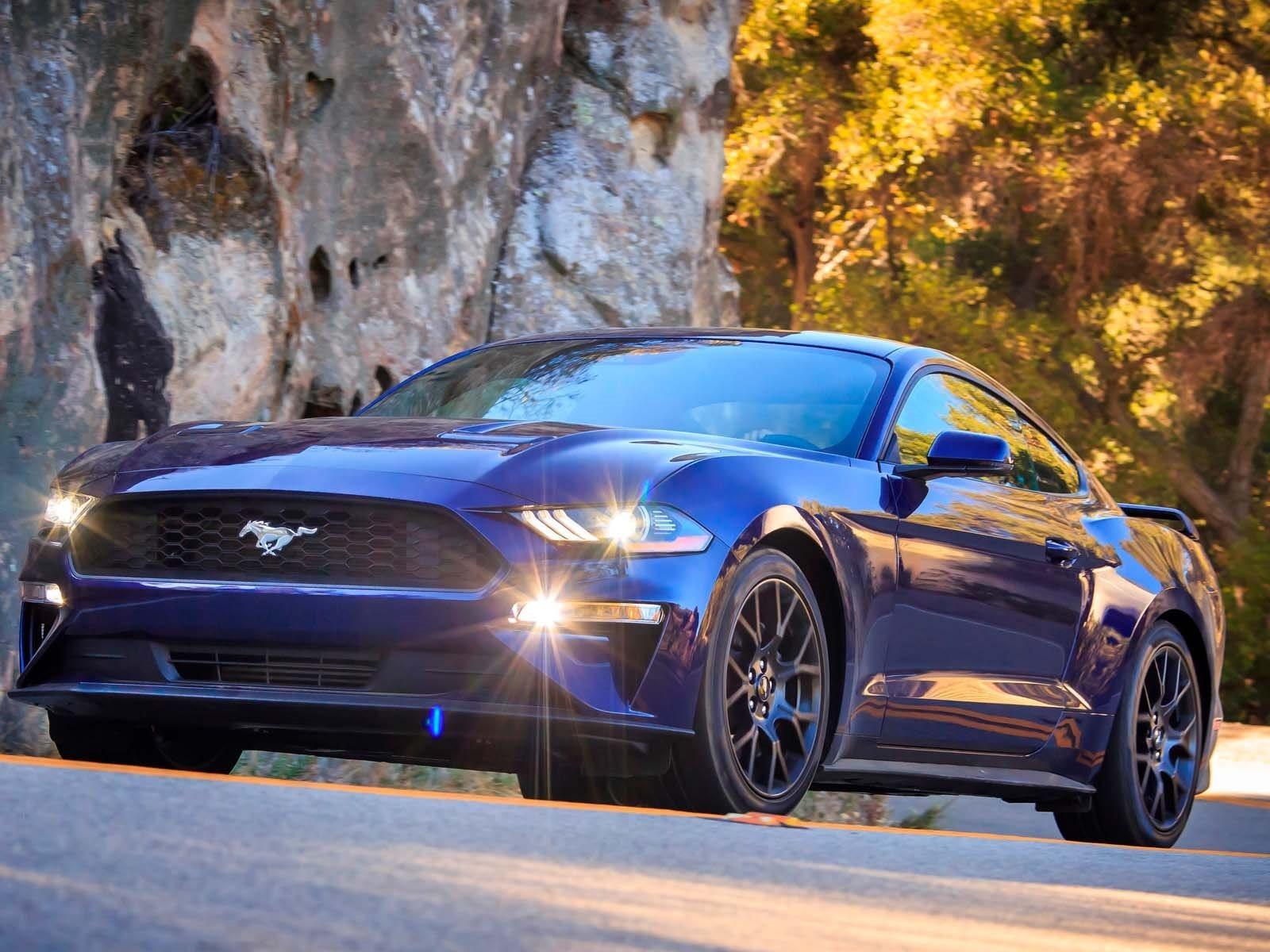 «Голубой овал» доставил 125 809 Мустангов новым хозяевам, разбросанным по 146 различным странам. Фактически, согласно данным регистрации мирового легкого транспортного средства IHS Markit, в 2017 году более трети продаж Mustang приходилось на экспорт