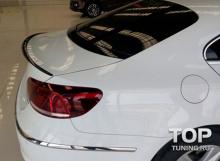 8179 Лип спойлер Duck Tail на VW Passat CC 1