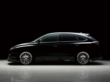 Накладки на пороги и двери - WALD Black Bison для Lexus RX 270/350/450h - 3 поколение