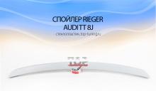 481 Спойлер крышки багажника - Обвес Rieger на Audi TT 8J