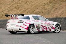 Набор наклеек на кузов автомобиля  - полный набор Rage Speed
