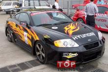 Набор наклеек на кузов автомобиля  - полный комплект Burn для Hyundai Tiburon.