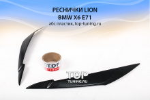 5520 Тюнинг - Реснички Lion на BMW X6 E71