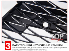 Заглушки буксировочной системы - 8111 Решетка - сетка в передний бампер Vision F-SPORT на Lexus NX
