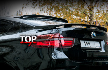955 Спойлер багажника - Обвес Hamann Tycoon EVO M на BMW X6 E71