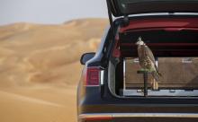 Кроме того, уникальными опциями являются GPS устройство слежения за птицами, бинокли и кожаные капюшоны и рукавицы ручной работы.
