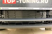 Оригинальная черная рамка + сетка-фильтр. Работа установочного центра Топ Тюнинг